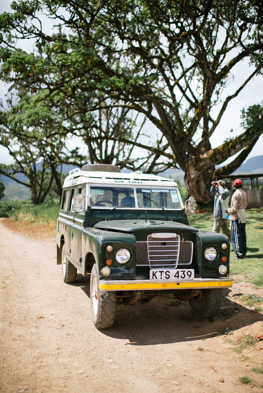 MtKenya-279.jpg