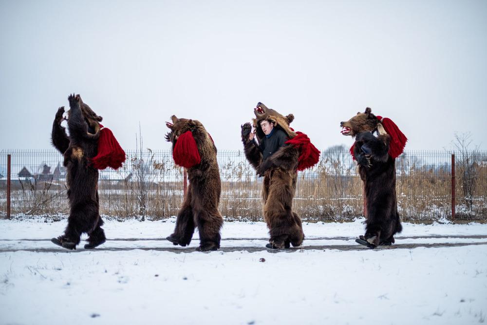 Alhindawi_Diana_Zeyneb_Bear Dance-2.jpg