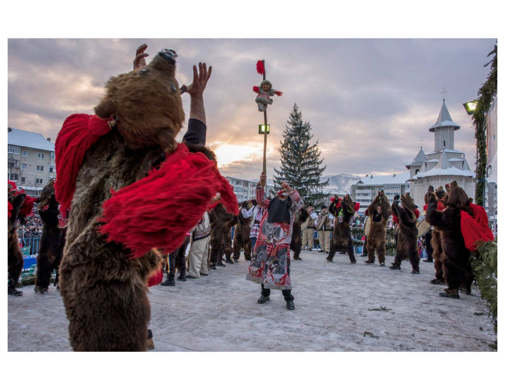 熊_National Geographic Traveler_DianaZeynebAlhindawi_Bear Dance 2.jpg