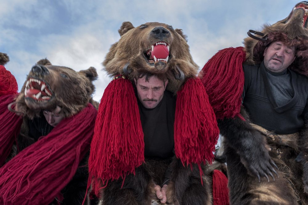 A troupe of bears from Asău village performs in central Comăneşti during the town's annual Bear Parade and Competition. December 30, 2014. Comăneşti town, Bacău county, Romania.