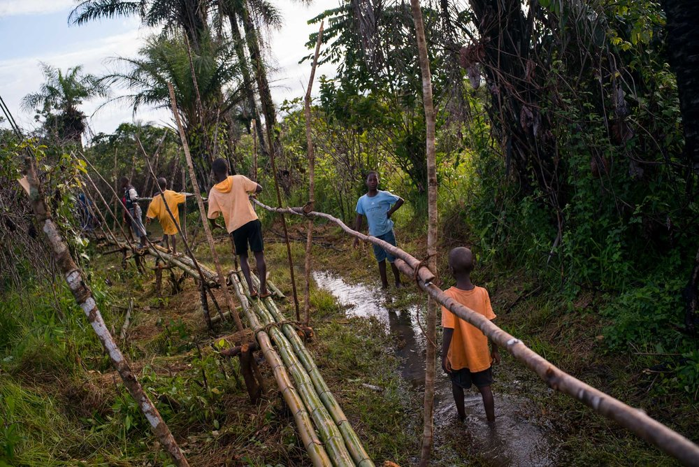 Children walk across a newly built bamboo bridge in order to cross a swamp area that stands between them and their school in Bogbeh village. It took four years for the villagers to gather the funds mecessary to build this bridge, roughly $160. By using the bridge the walk to school for children from teh next village is cut down from 1 1/2 hours to 1/2 hour. September 24, 2016. Bogbeh village, Bomi county, Liberia.
