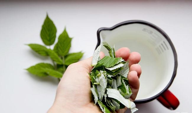 670px-Make-Raspberry-Leaf-Tea-Step-1.jpg
