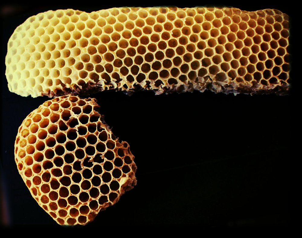 Natural Raw Honey Comb