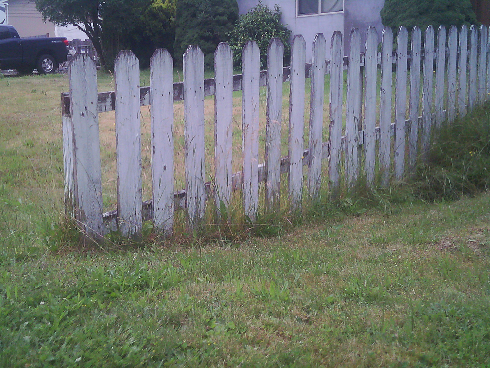 Fence By Captured By Katie Photography, Bonney Lake Photographer