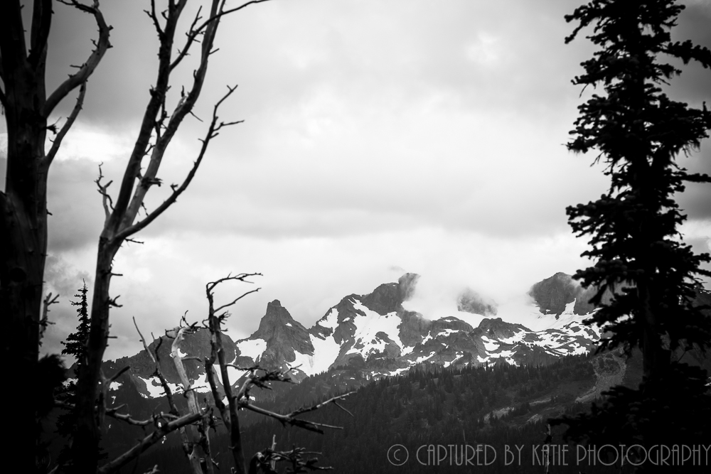 Emmons Vista By Captured By Katie Photography, Bonney Lake Photographer