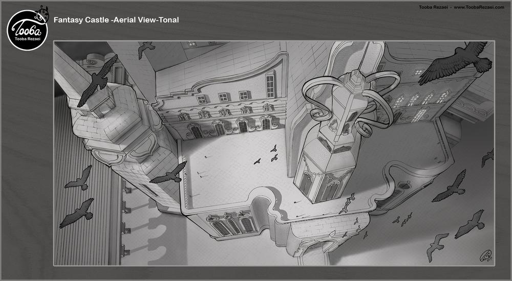 fantasy-castle-aerial view-tonal.jpg