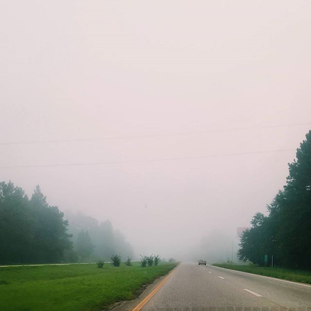 All the fog this morning 😍 If you didn't go outside, it could almost pass for winter. #alabamasummer