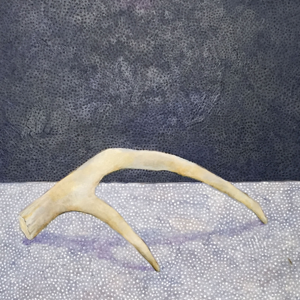 "Antler No. 3 , acrylic on panel, 7.75"" x 7.75"""