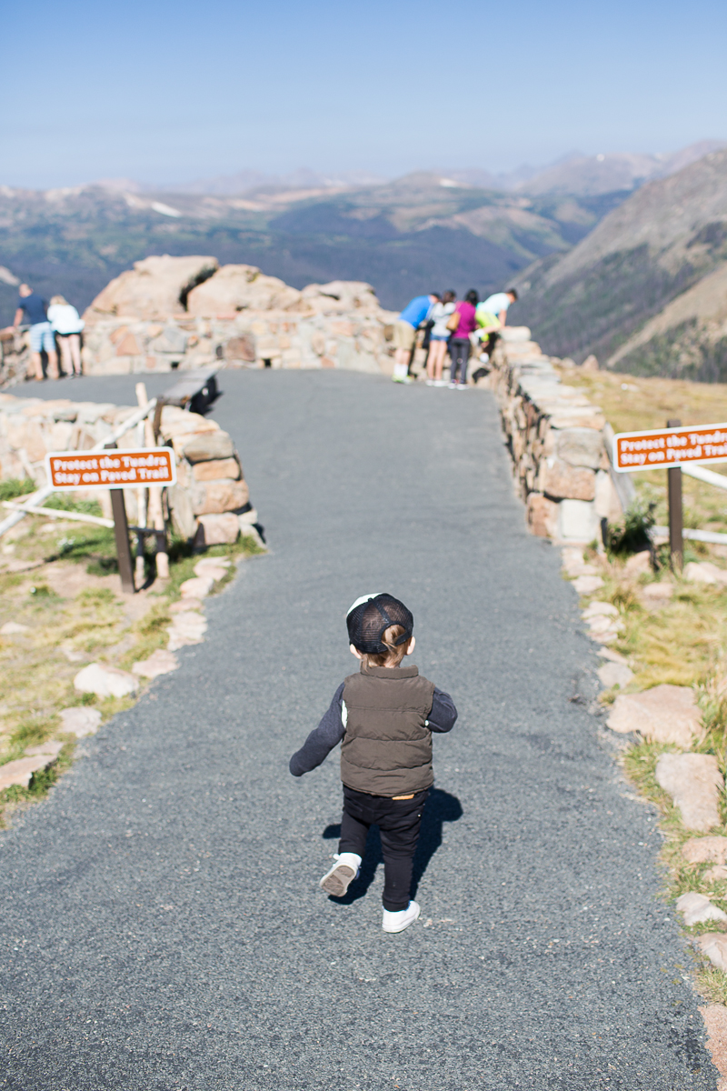 Ezra running the trail at the top of Trail Ridge Road.
