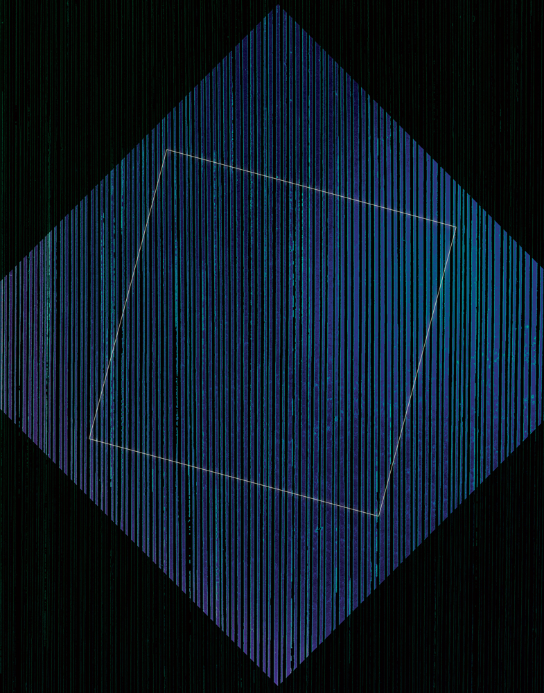 Mirjam Hümmer – Homeodynamics