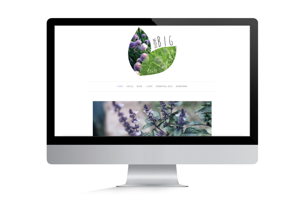 Website Design Portfolio May 2017.jpg
