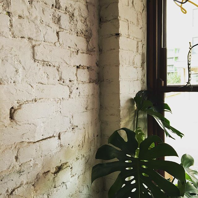 Green inspired 🌿  #freeyourcreations #interior #greenery #bricks #perthcreatives #perthgirlboss #graphicdesigner #plant #inspiration #passion #lunchbreak