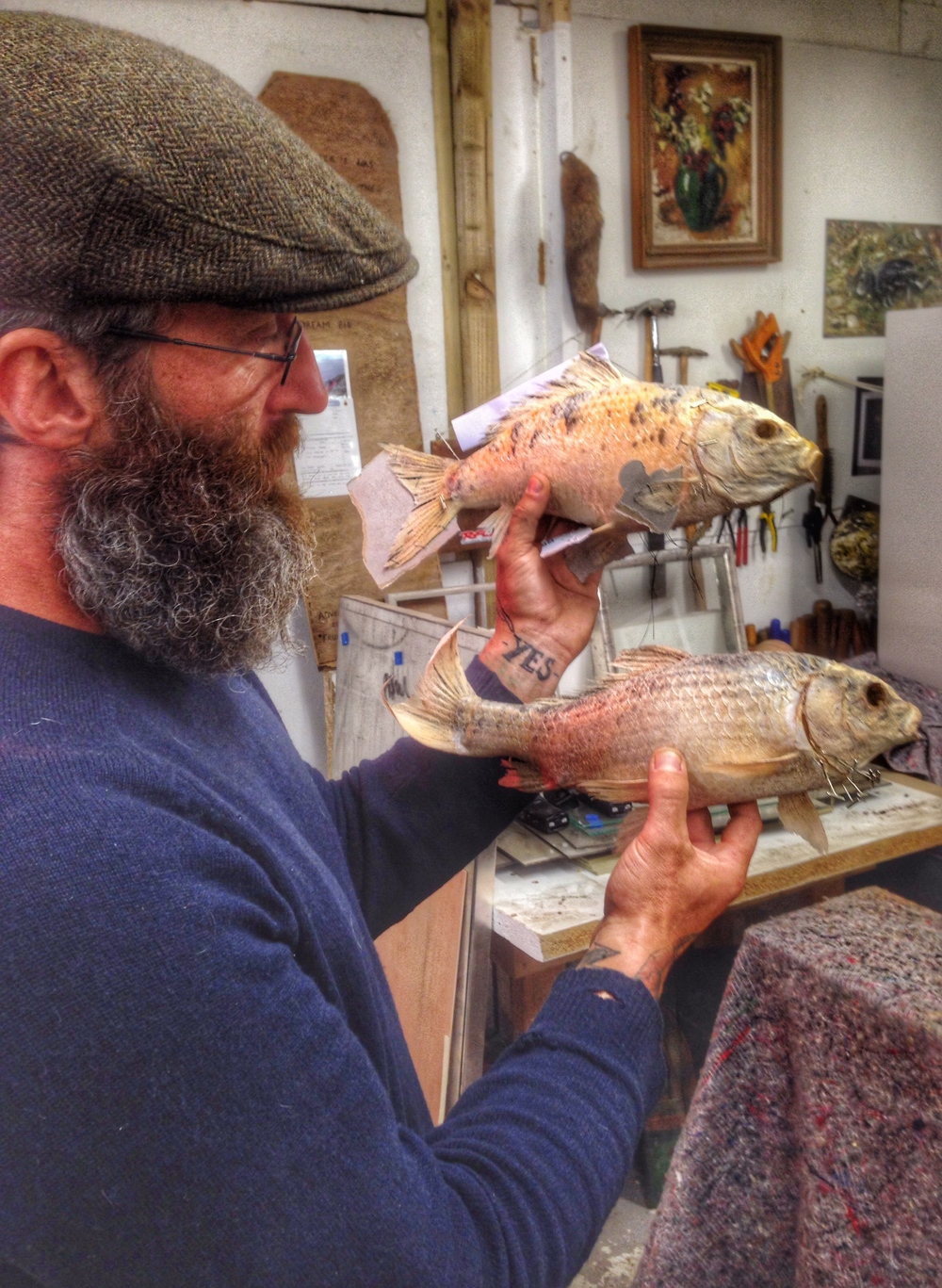 Paul Broomfield taxidermy art