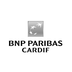 07_BNP.png
