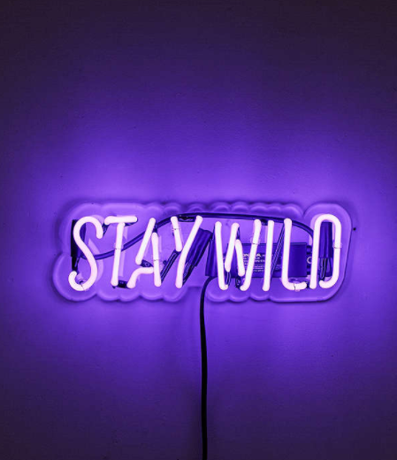 URBAN OUTFITTERS    Neon Mfg. Stay Wild Sign