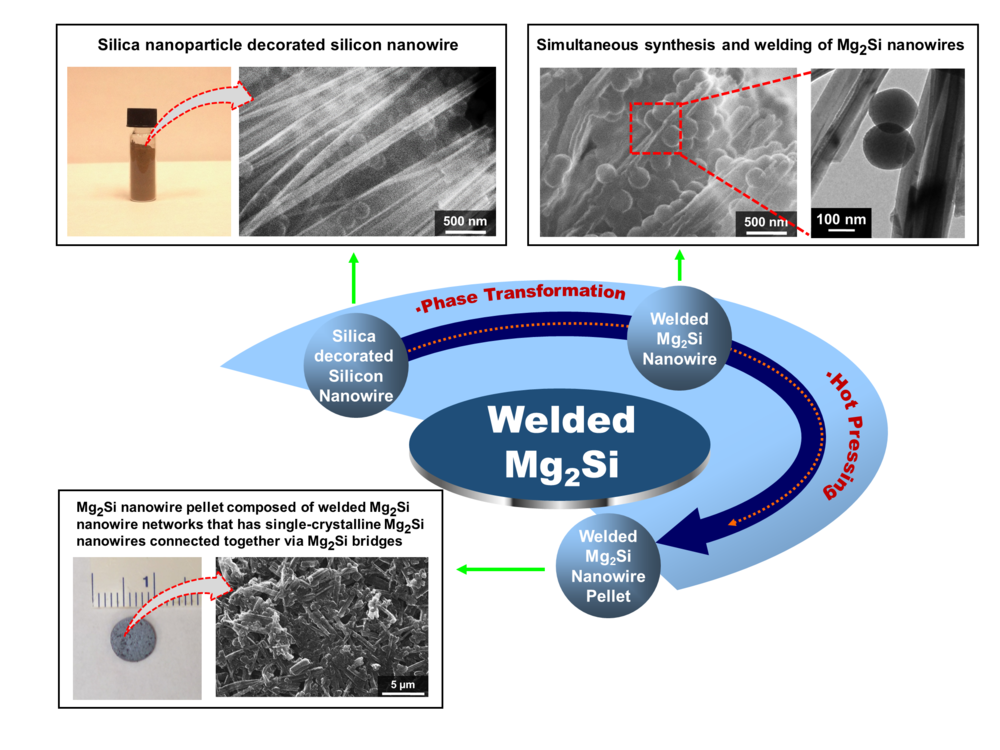 A schematic representing the steps involved in the synthesis and welding of single-crystalline Mg2Si nanowires for the formation of Mg2Si nanowire networks.  Chemistry of Materials, 26, 2814, 2014