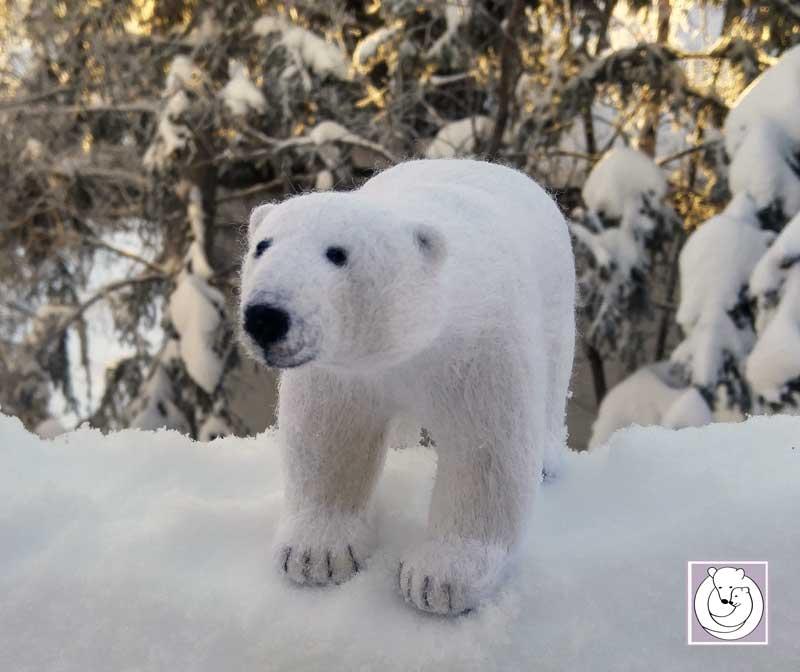 Polar Bear Feb 2017
