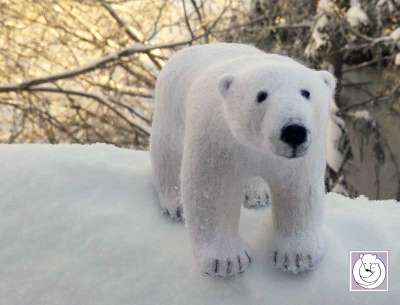 Polar Bear Feb 2017