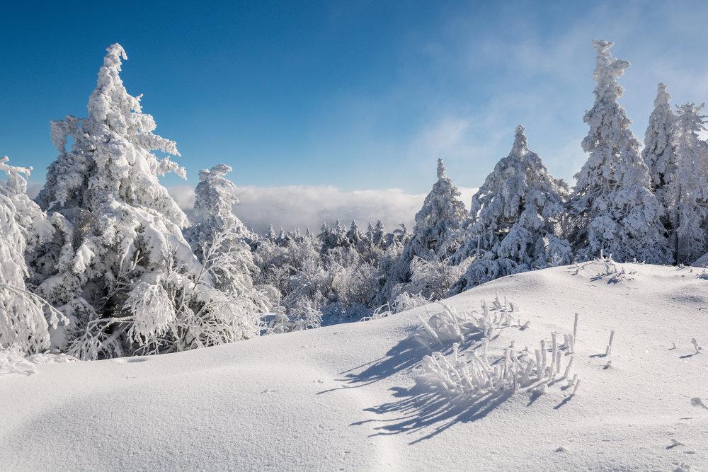 Black Mountain Winter 2 Great Range Frames