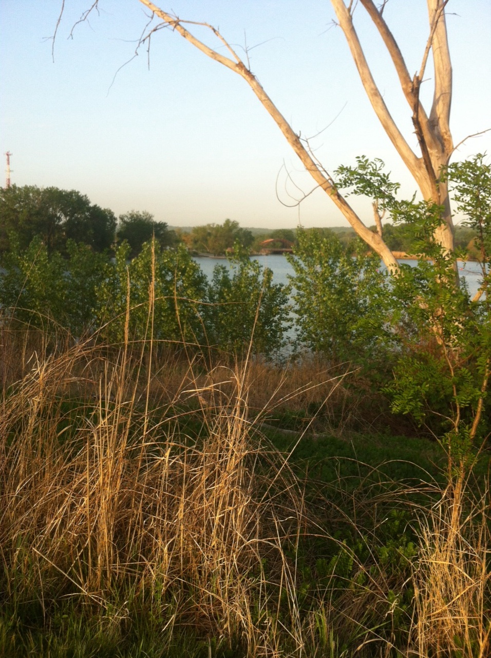 Snapshot from my walk in Overpeck Park, Bergen County, NJ. Nice, but doesn't compare to my Central Park.