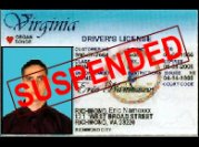 license_suspended.jpg