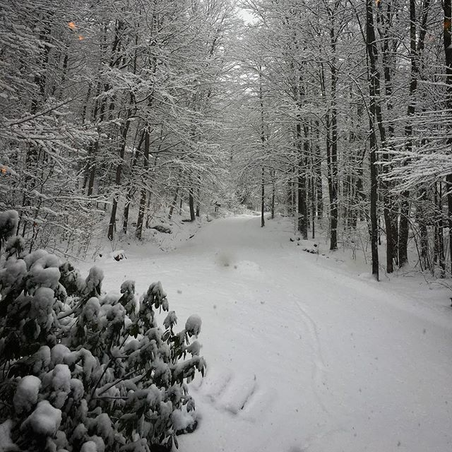 Winter is here to stay ⛄️⛄️ @jdtroad . . #view #jdtroad #snow #winterwonderland #newengland #loveit