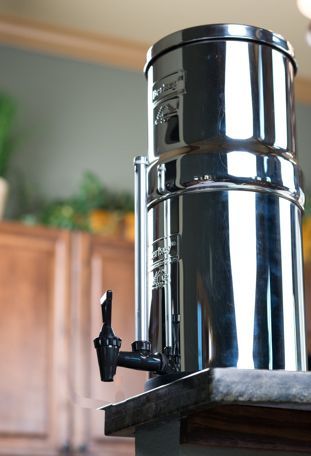berkey-home-lifestyle-09122017-7.jpg