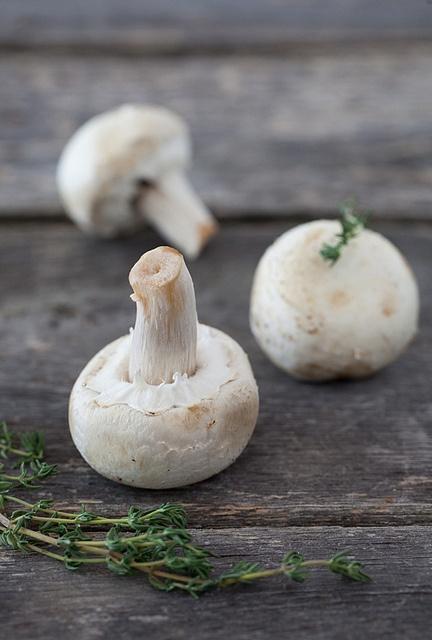 champignons de paris.jpg