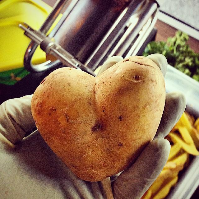 pauline-valentine-potatoe.jpg