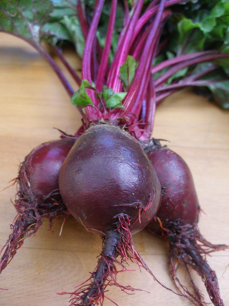 beet-roots.jpg