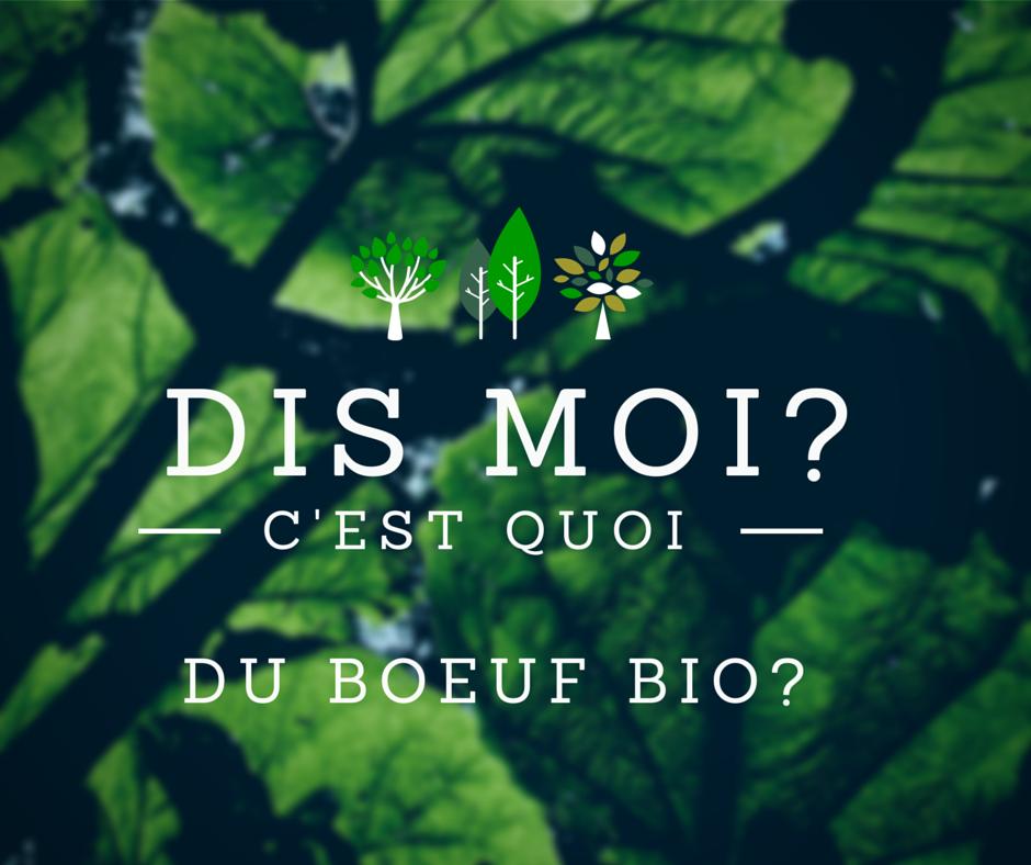 Boeuf bio.PNG