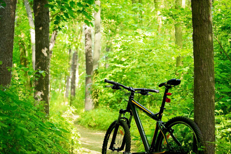 bike trail tucker boulder park