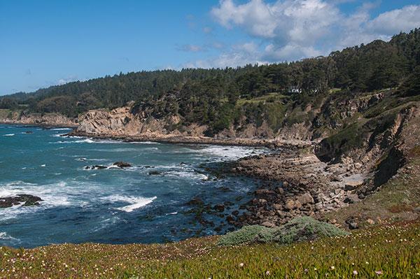 Sonoma Coast Cove