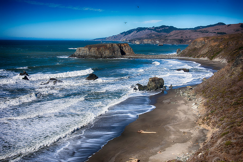 Sonoma Coast - Photo by Francesca Scalpi