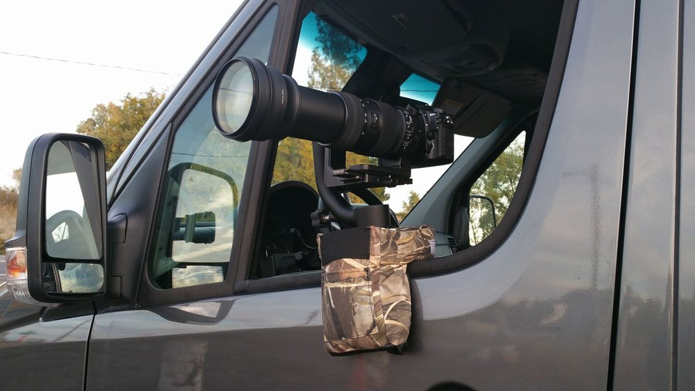 Learn about the type of equipment used to capture Birds in Flight from photographer Francesca Scalpi.