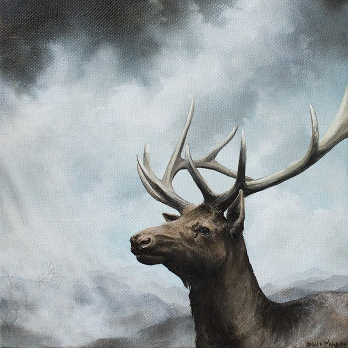 "'ELK' 7.5"" x 7.5"" oil on canvas - 2015 available - Haven Gallery, New York"