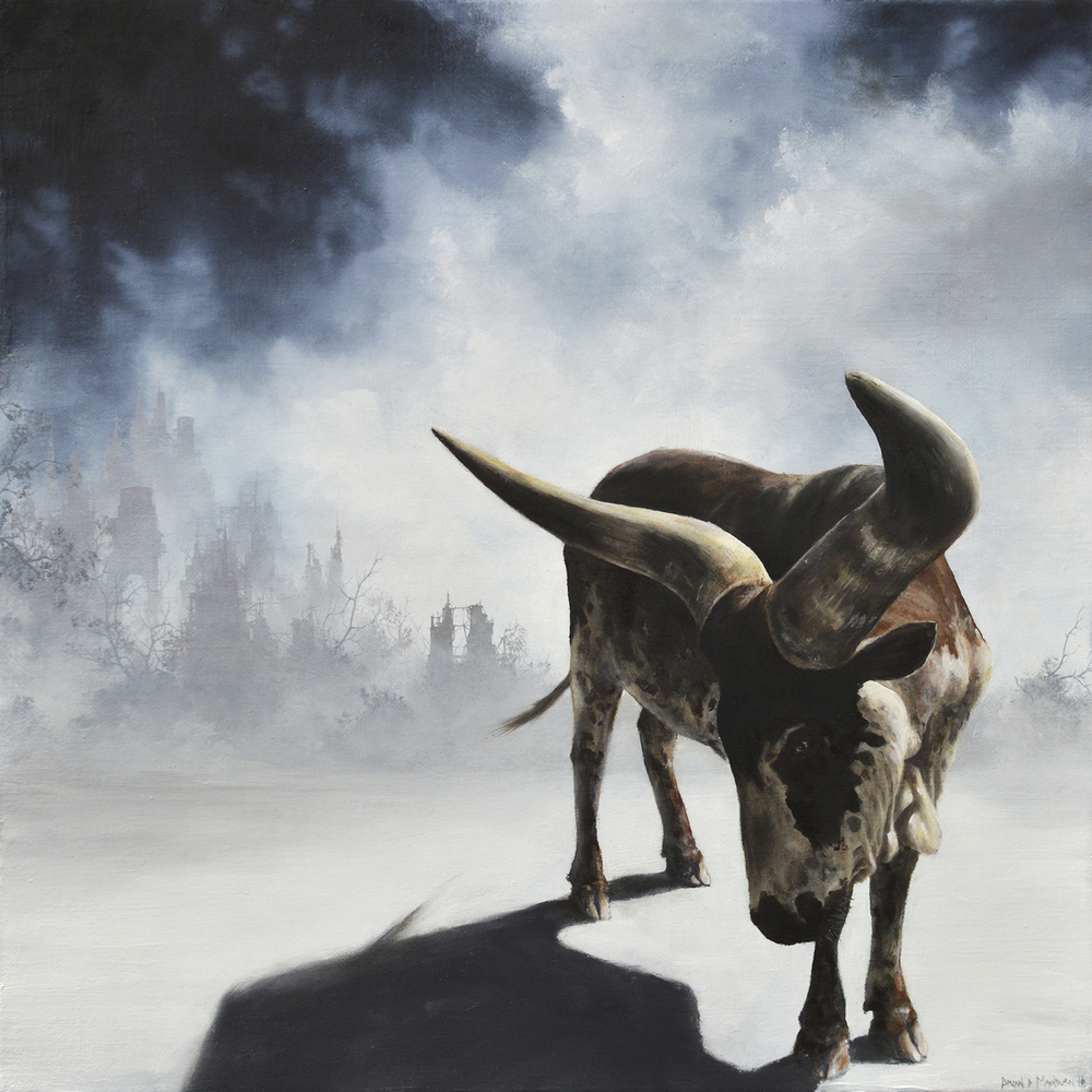 "watusi 12"" x 12"" oil on linen"
