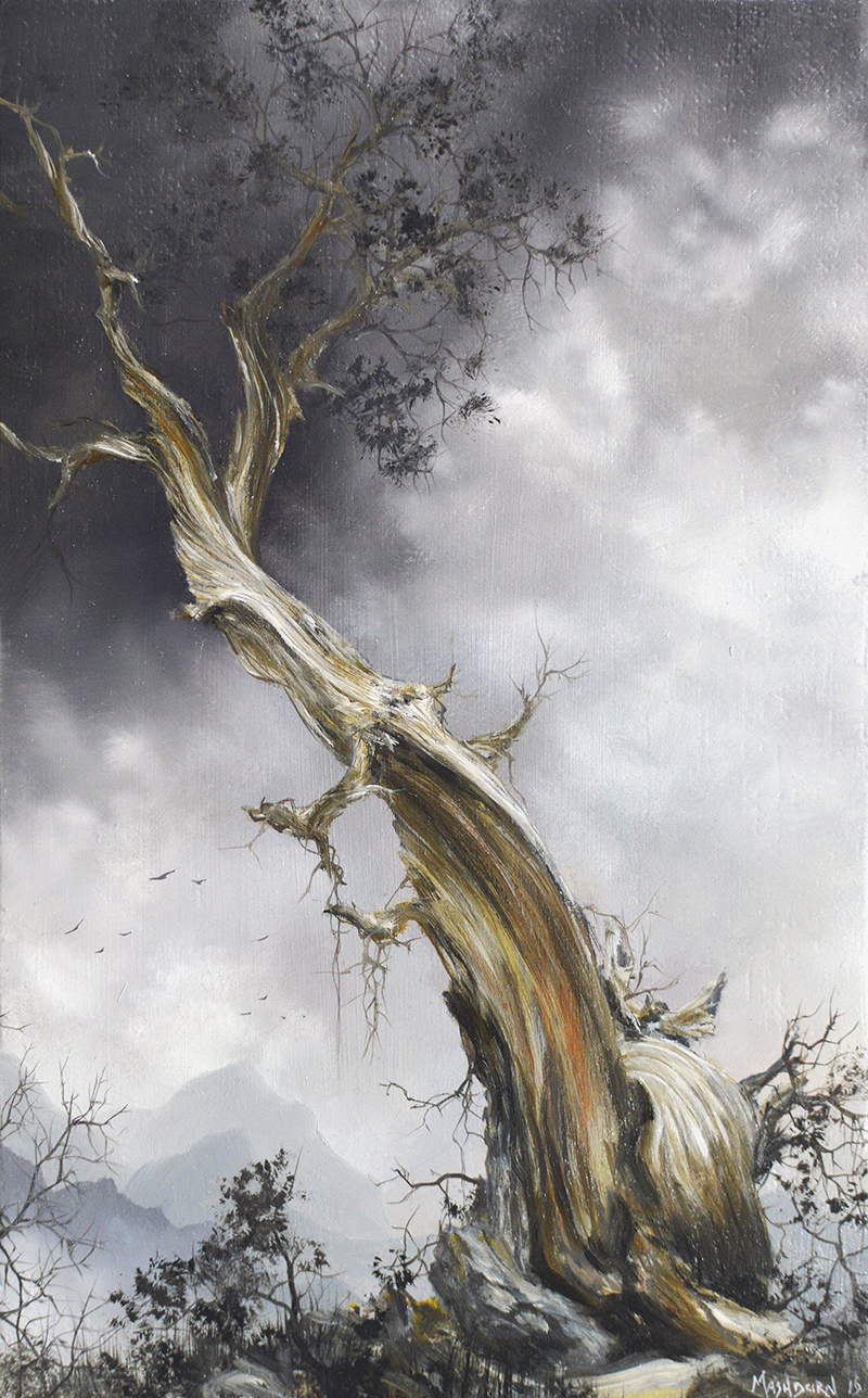 "ancient pine tree oil on linen 4.25"" x 6.75"""