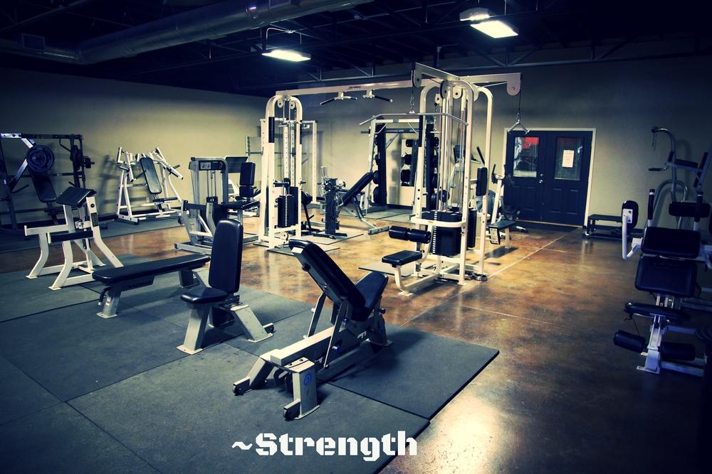 weights2.jpg