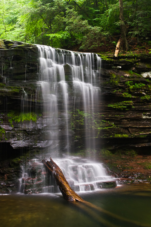 Harrison Wright Falls during a humid summer day. Ricketts Glen State Park, Pennsylvania.