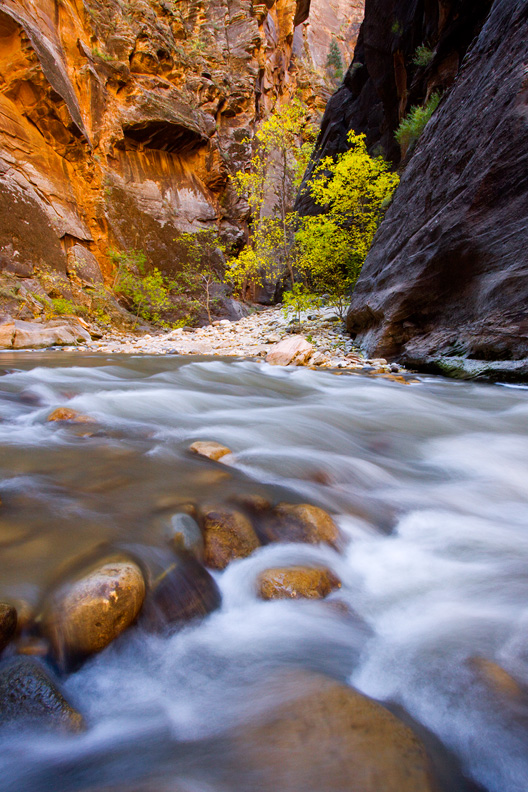 """X Marks the Spot"" - Rapids deep in The Narrows. Zion National Park, Utah."