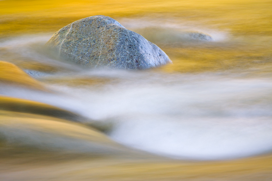 """Gold Rush"" - A lone rock in a river reflecting golden autumn leaves. Adirondack State Park, New York."