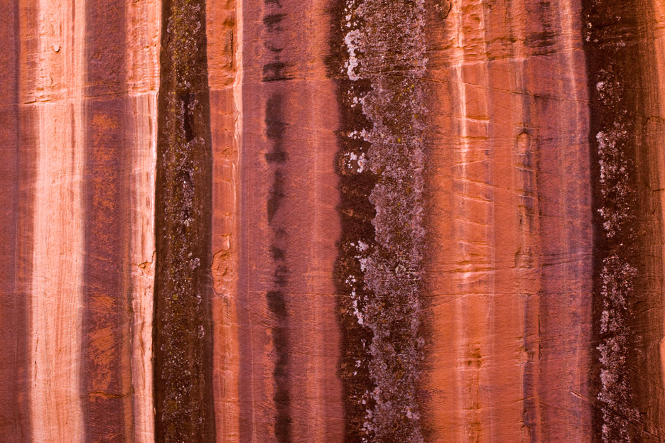 """Hard Candy"" - Colorful desert varnish on a large canyon wall. Utah."