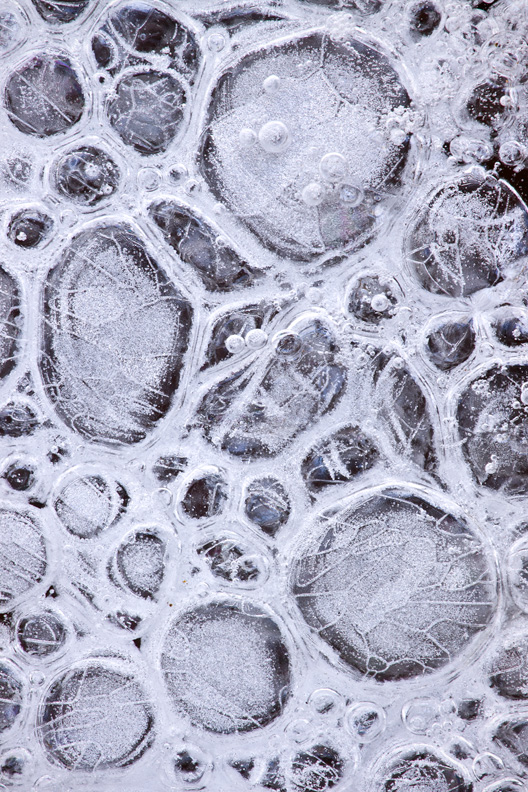 Prehistoric Ice Bubbles, McKee-Beshers Wildlife Management Area, Maryland, United States.
