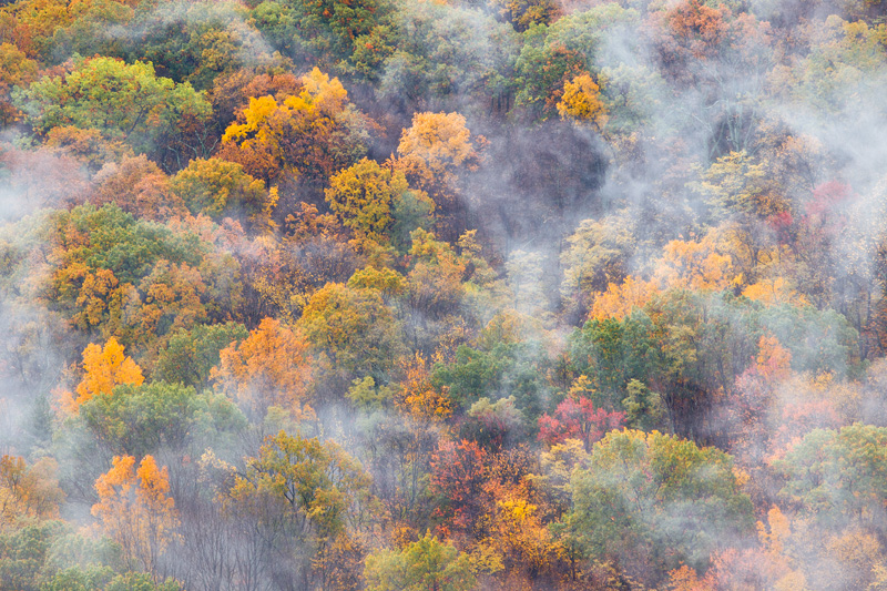 Fog Drifting Above an Autumn Forest, Shenandoah National Park, Virginia, United States.