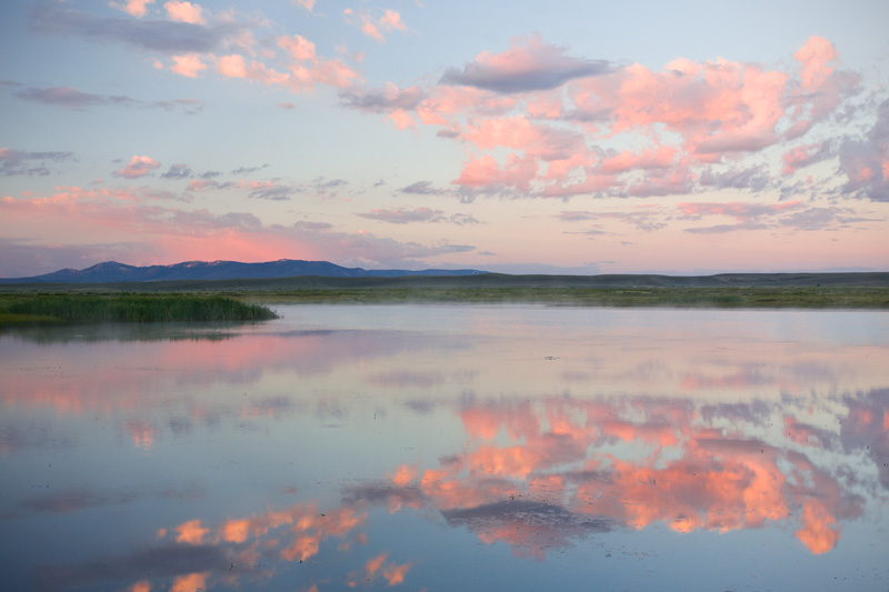 Serene Summer Sunrise Over a Prairie Pond, Colorado, United States.