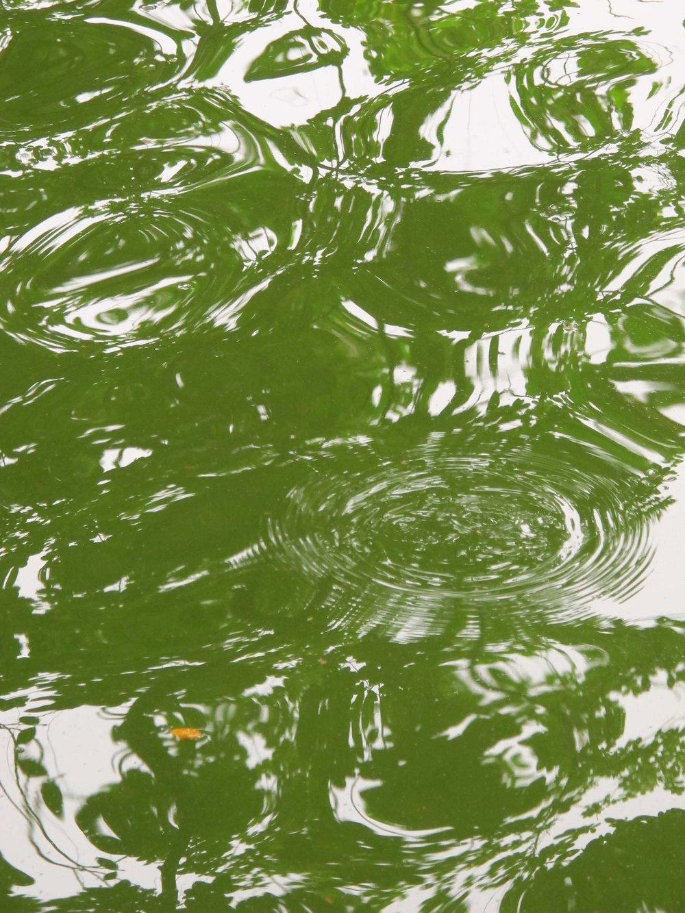 Hoàn Kiem Lake, Hanoi
