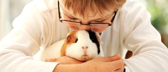 Bunnies-bunny-rabbits-16437984-1280-800.jpg