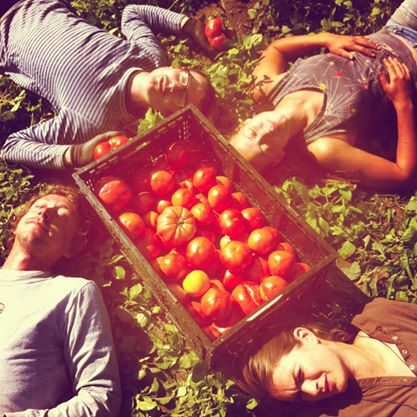 TomatoCircle.jpg