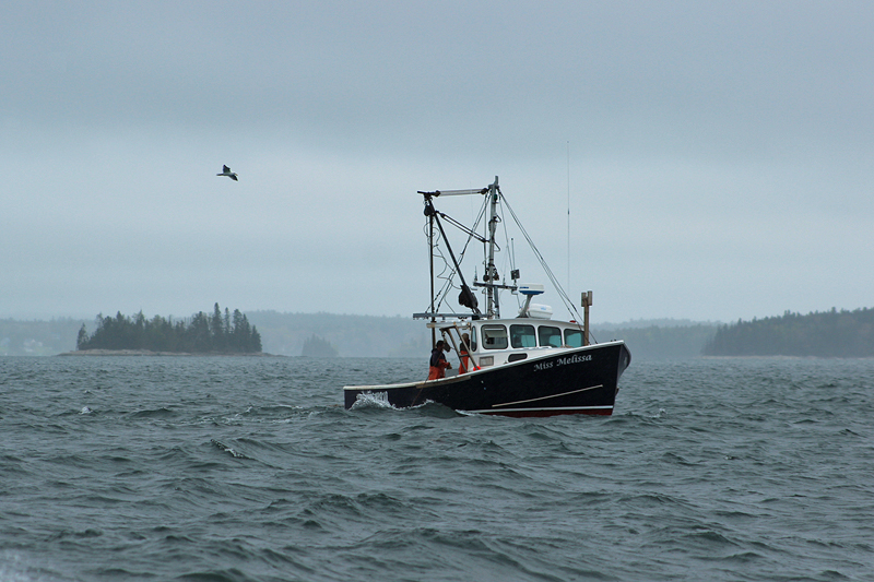 lobster boat maine